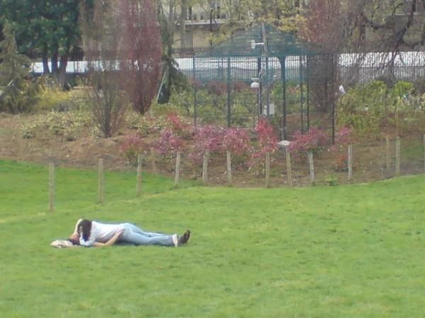 פארק אוונו: Parc Monceau