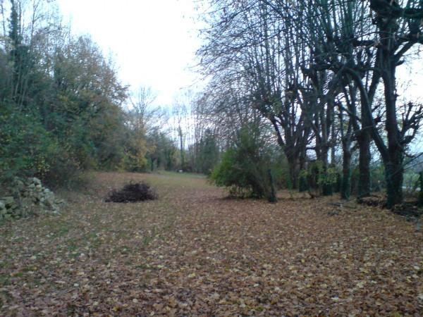 החצר הגדולה והעלים היבשים שהצטברו בה כל הסתיו