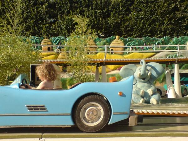 פיל ומכונית בטיולרי. מי צריך יותר?
