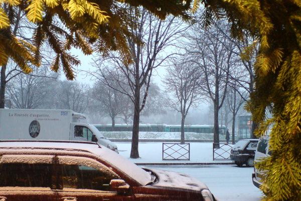 שלג טרי / קטנה פריזאית