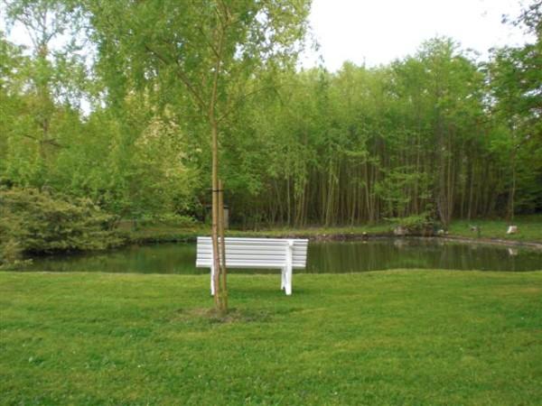 הספסל ההוא מול האגם. על זה בדיוק הם שרו