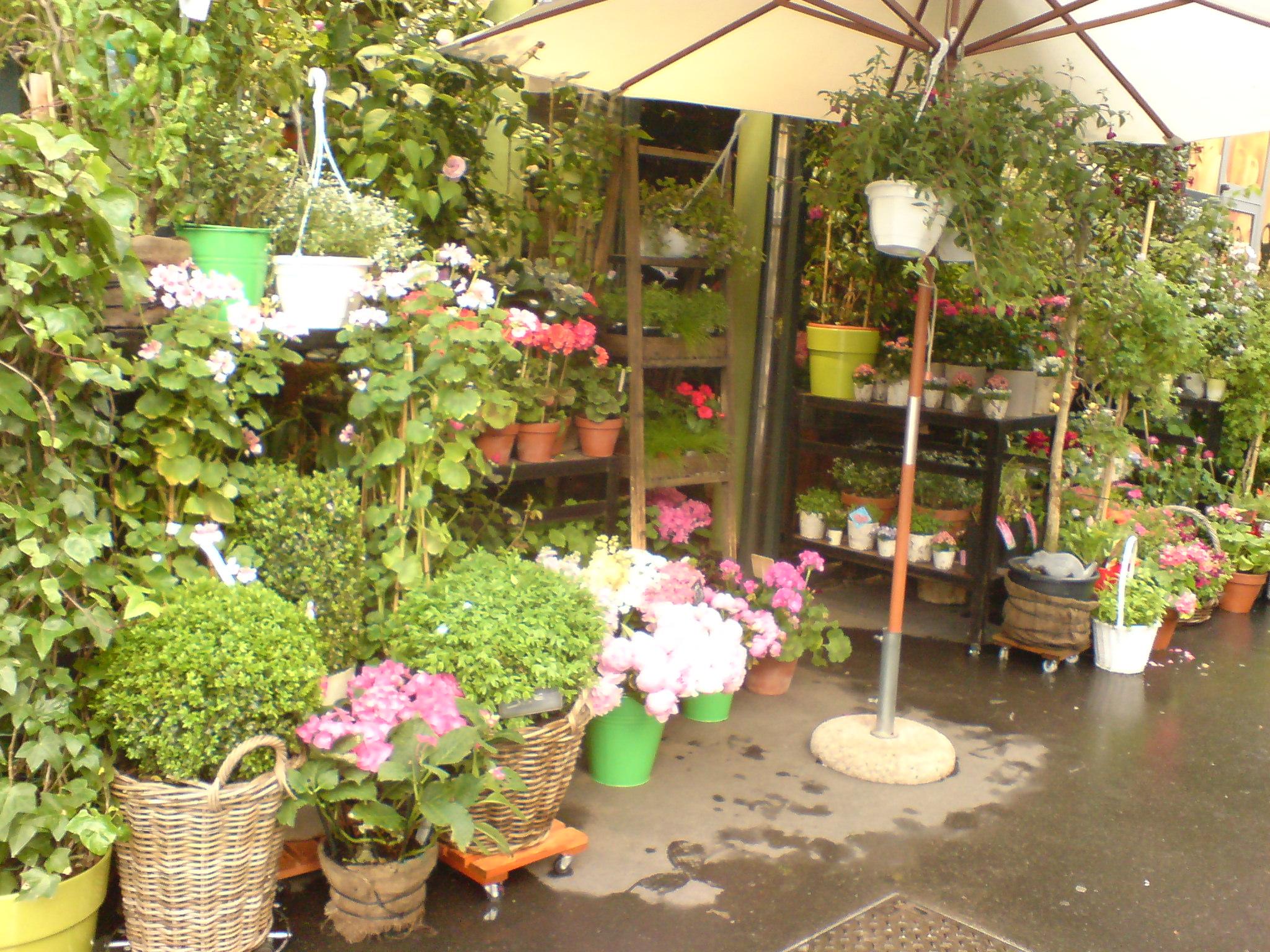 אחת: חנות פרחים מקסימה