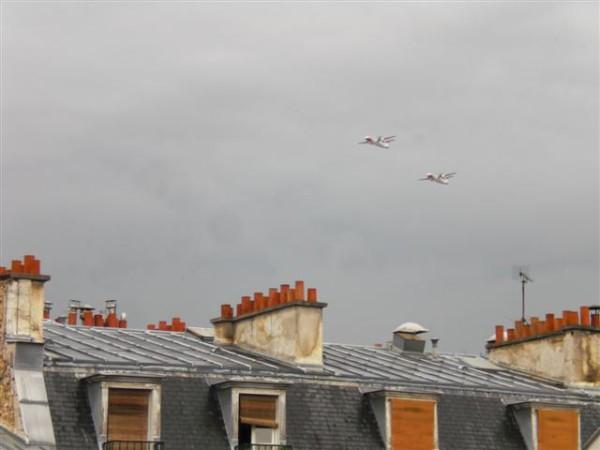 את המטוסים עם האדום כבר ראיתי כשהיינו בפארק, אומרת הגדולה בביטול, בחזרות למטס
