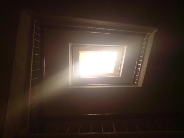 אור. וצל (2)