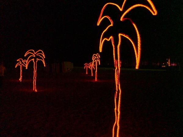 פאלם ביץ'. חוף גורדון, שלוש בלילה