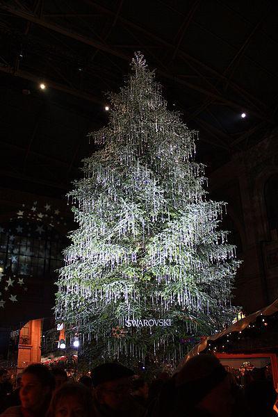 עץ האשוח הסוורוסקי. צילום: Roland zh  - Wikimedia