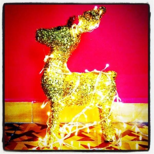 במבי לחג או עגל הזהב.