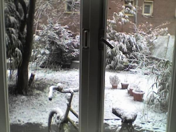 חצר בחורף