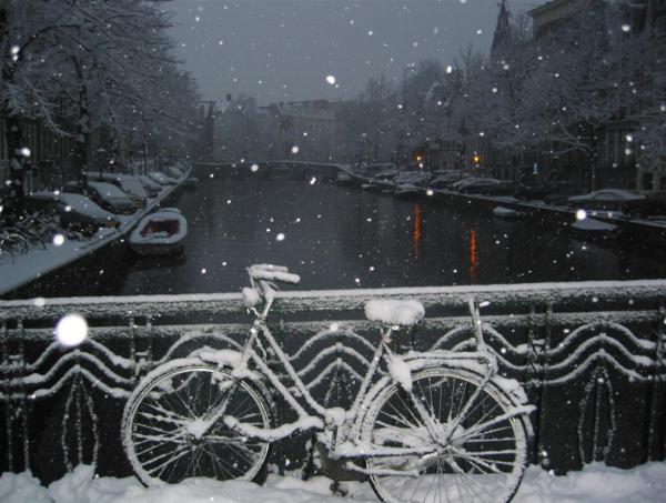 זכות השיבה לאמסטרדם / אייל דה-ליאו