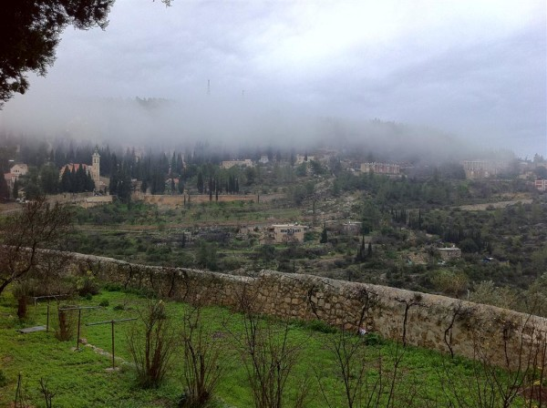 ערפילי בוקר והעמק 3