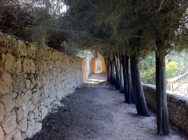 בדרך לבית הקברות