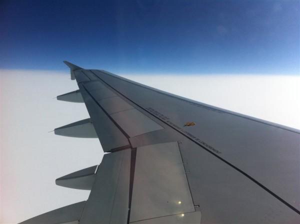 כנפיים שלמות