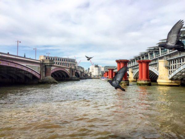 FoMO, FoFoMO, CoFoMO: לונדון 2017